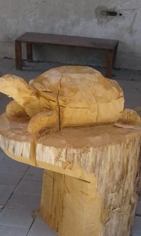 Holzskulptur Schildkröte